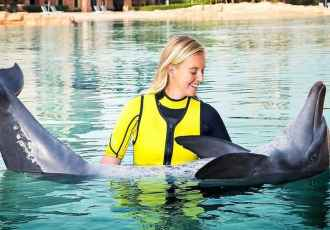 Swim With Dolphins Dubai